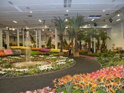Parlament der Blumen